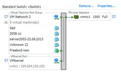 "Lost network connectivity on virtual switch ""vSwitch2""."