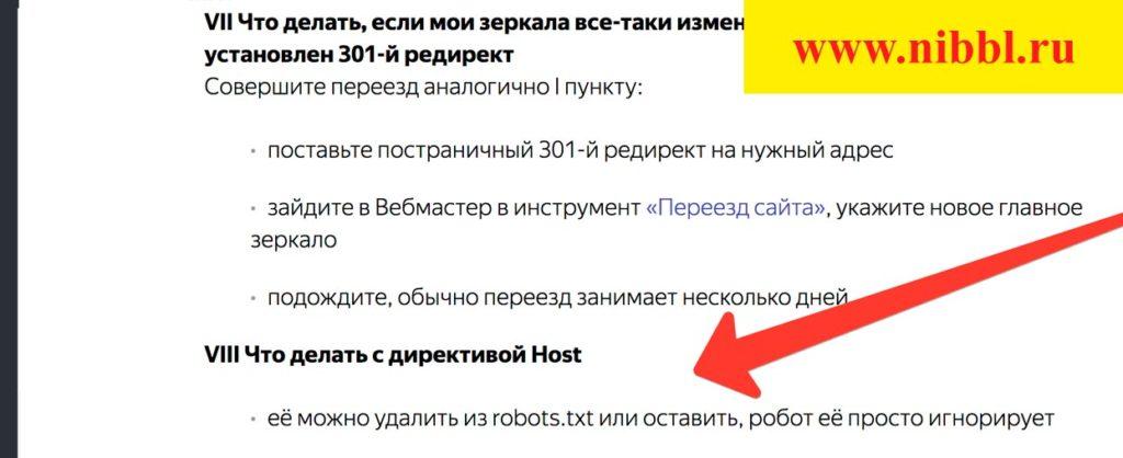 robots директива host