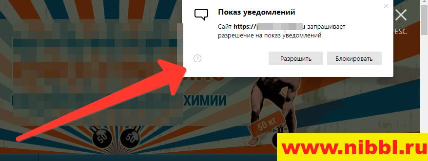 всплывающее окно с рекламой в браузере