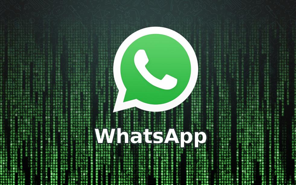 whatsapp взлом