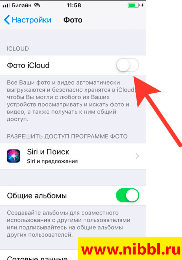 Как перенести файлы на iPhone с компьютера