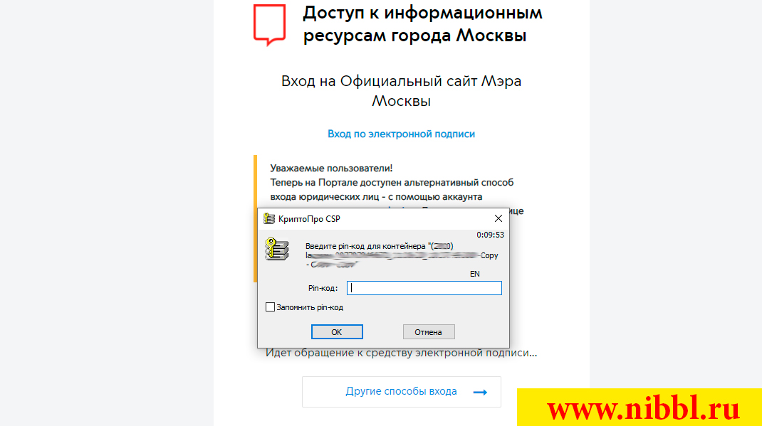 как работает защита эцп на сайтах
