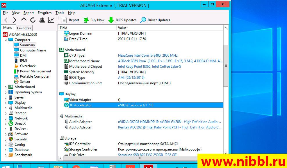 microsoft базовый видеоадаптер windows 10 обновить драйвера