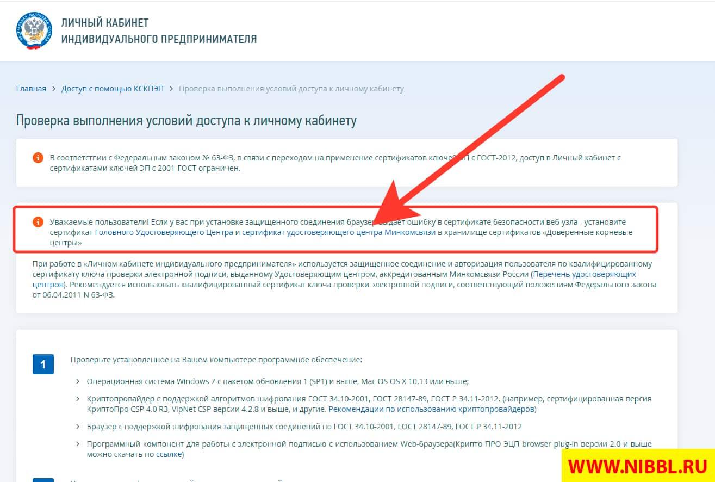 настройка компьютера для работы с сайтом налог.ру