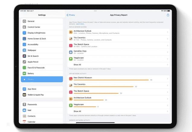 отчет о конфиденциальности приложения в iPadOS 15